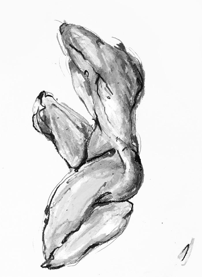 body1b